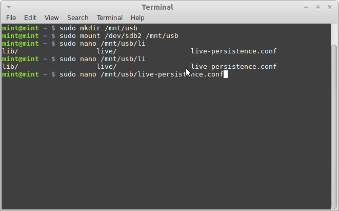 Screenshot-Terminal-1